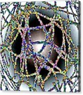 Tangled Web Acrylic Print by Will Borden