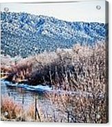 Taos Creek Acrylic Print by Lisa  Spencer
