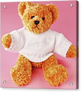Teddy Bear Acrylic Print by Terry Mccormick