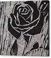 The Black Rose Acrylic Print by Marita McVeigh