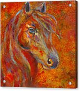 The Fire Of Passion Acrylic Print by The Art With A Heart By Charlotte Phillips