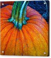 The Great Pumpkin Acrylic Print by Glenna McRae