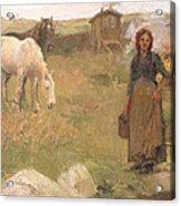 The Gypsy Camp Acrylic Print by Harold Harvey