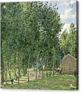 The House In The Forest Acrylic Print by Camille Pissarro