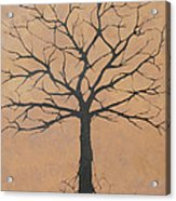 the Lindsey Tree Acrylic Print by Julia Raddatz