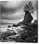 The Old Man Of The Sea - Strait Of Juan De Fuca Acrylic Print by Nathan Mccreery