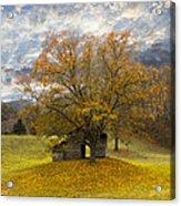 The Old Oak Tree Acrylic Print by Debra and Dave Vanderlaan