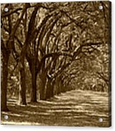 The Old South Series In Sepia Acrylic Print by Suzanne Gaff