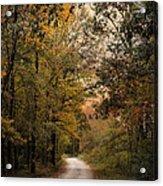 The Path Less Traveled 2 Acrylic Print by Jai Johnson