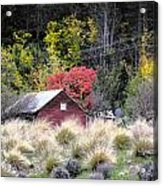 The Red Shed Acrylic Print by Karen Lewis