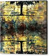 The Small Dreams Of Trees Acrylic Print by Tara Turner