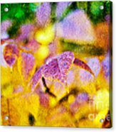 The Warmth Of Autumn Glow Abstract Acrylic Print by Andee Design
