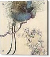 The Water Babies The Most Beuatiful Bird Of Paradise Acrylic Print by Warwick Goble