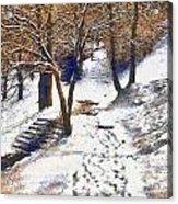 The Winter Park Acrylic Print by Odon Czintos