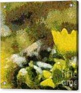 The Yellow Flower Acrylic Print by Odon Czintos