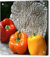 Three Peppers Acrylic Print by Jim  Arnold