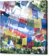 Tibetan Buddhist Prayer Flags Acrylic Print by Glen Allison