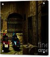 Time Travellers Acrylic Print by Andrew Paranavitana