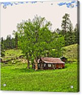 Tom's Old Cabin Acrylic Print by James Steele