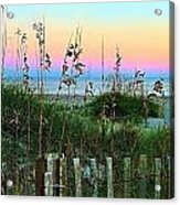 Topsail Island Dunes And Sand Fence Acrylic Print by Julie Dant