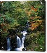 Torc Waterfall, Ireland,co Kerry Acrylic Print by The Irish Image Collection