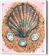 Treasure Of The Sea Acrylic Print by Sabrina Khan