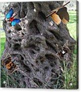Tree Of Life Acrylic Print by Eric Kempson