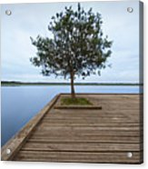 Tree On Jetty Acrylic Print by Billy Currie Photography
