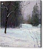Trees In A Winter Fog Acrylic Print by Bob Richey