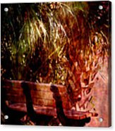 Tropical Bench Acrylic Print by Susanne Van Hulst