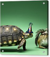 Turtle And Chipmunk Wearing Party Hats Acrylic Print by Jeffrey Hamilton