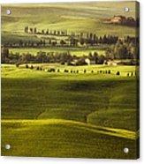 Tuscan Fields Acrylic Print by Andrew Soundarajan