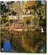 Twiggy Reflections Acrylic Print by Pamela Patch