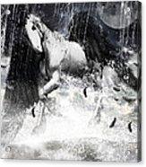 Unicorn's Complexities Acrylic Print by Lourry Legarde