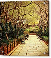 Urban Forest Primeval - Central Park Conservatory Garden In The Spring Acrylic Print by Vivienne Gucwa
