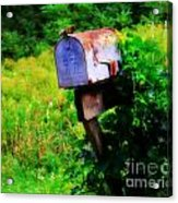 U.s. Mail 2 Acrylic Print by Perry Webster