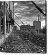 Usa's Most Dangerous City Acrylic Print by Jane Linders