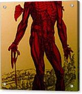 Vesalius De Humani Corporis Fabrica Acrylic Print by Science Source