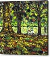 Walk In The Park Acrylic Print by John  Nolan