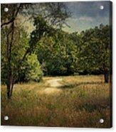 Wandering Path I Acrylic Print by Tamyra Ayles