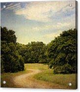Wandering Path II Acrylic Print by Tamyra Ayles