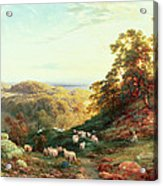 Watching The Flock Acrylic Print by George Vicat Cole