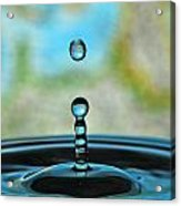 Water Drop 2 Acrylic Print by Donna Caplinger