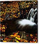 Waterfall Acrylic Print by Irinel Cirlanaru