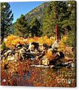 West Fork Of The Carson River Fall Colors Acrylic Print by Scott McGuire