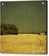 White Barn Acrylic Print by Paul Grand