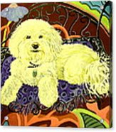 White Dog In Garden Acrylic Print by Patricia Lazar