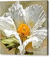 White Paper Flower Acrylic Print by Artist and Photographer Laura Wrede