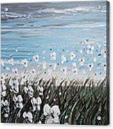 White Wildflower Breeze Acrylic Print by Christine Krainock