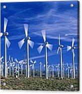 Wind Turbines, California, Usa Acrylic Print by David Nunuk